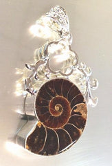 Million-Of-Years-Old Ammonite Fossil Healing Pendent - Unusual!