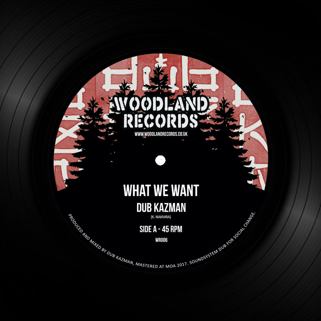 DUB KAZMAN - What We Want (7