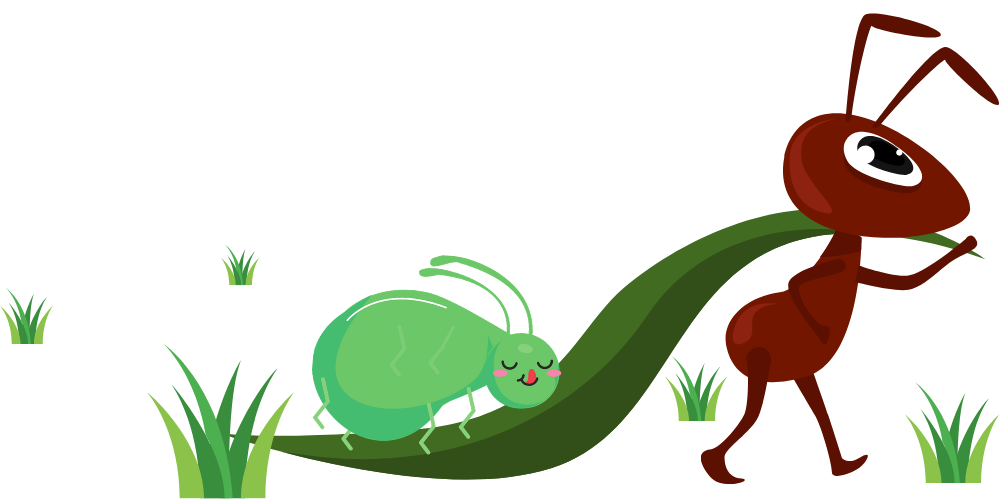 Aphids have a mutualistic relationship with Ants
