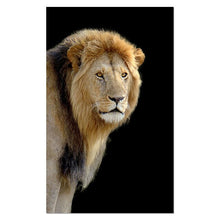 Load image into Gallery viewer, Large Cat Canvas Wall Art