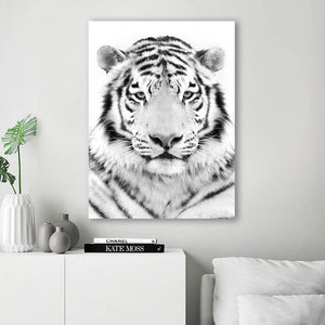 White Tiger Animal Canvas Wall Art