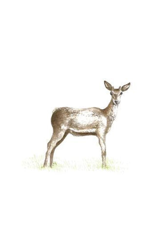 Deer Art Print Miniatures - Esque