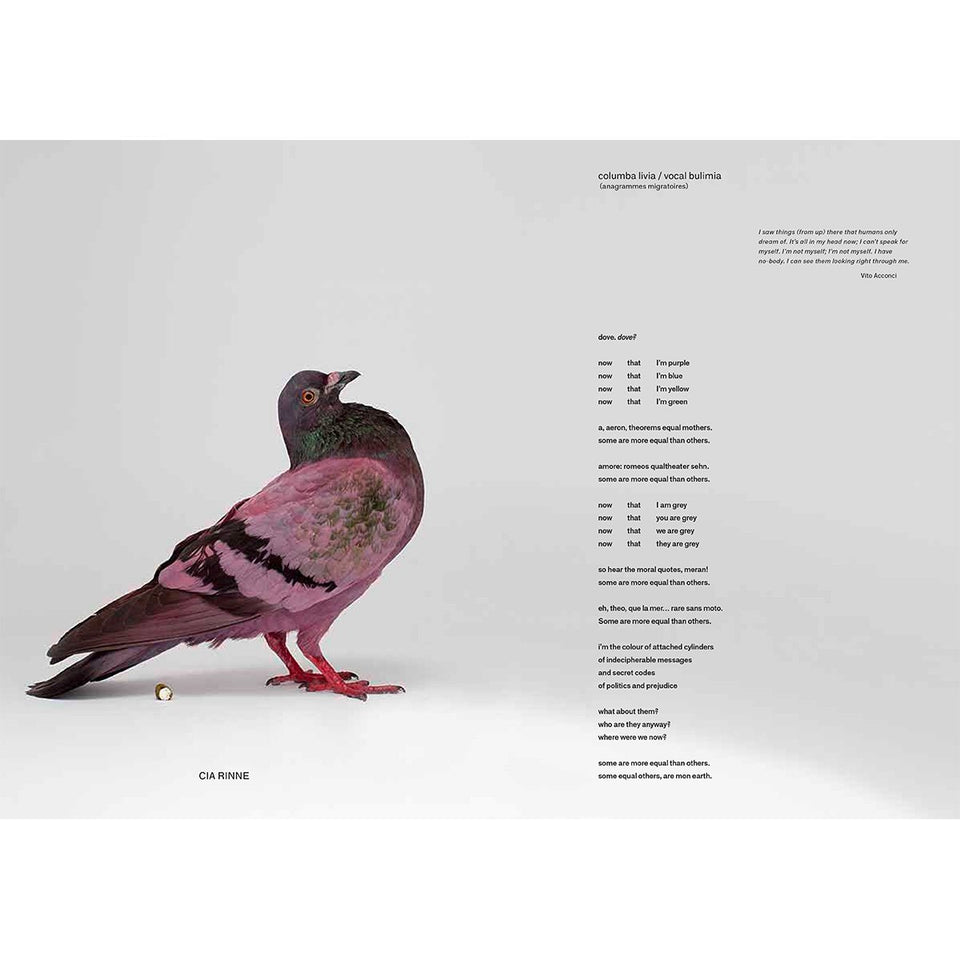 Some Pigeons Are More Equal Than Others by Julius von Bismarck