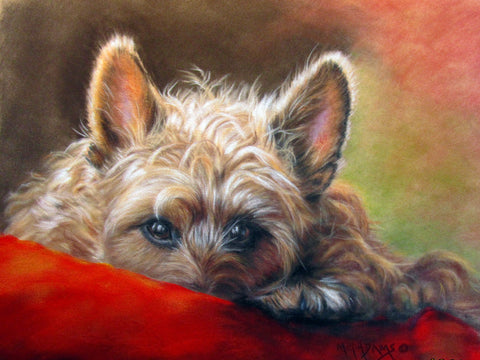 "What's All About Alfie, 11""HX14""Wx1.5""D"