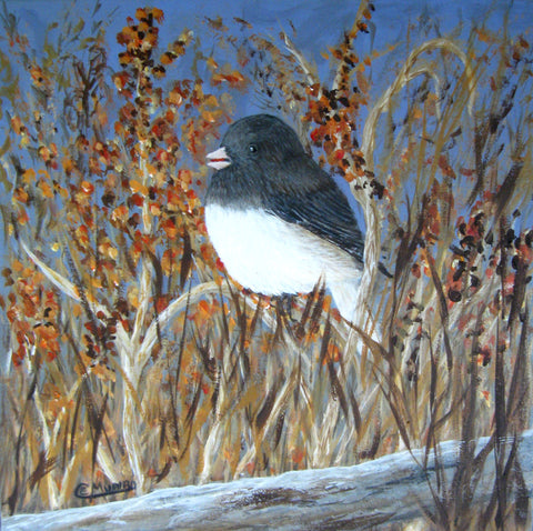 "Dark-eyed Junco, 12""Hx12""W"