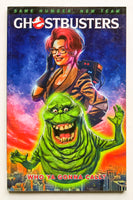 Ghostbusters Who Ya Gonna Call IDW Graphic Novel Comic Book