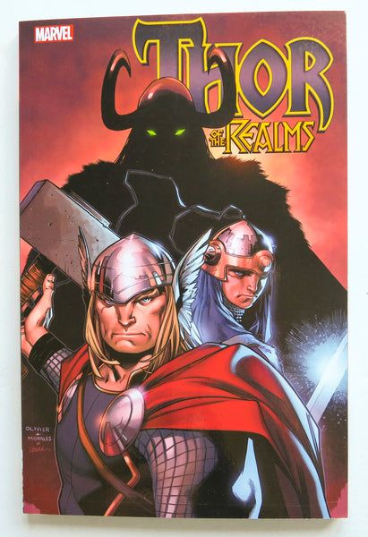 Thor of the Realms Marvel Graphic Novel Comic Book
