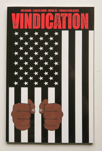 Vindication Image Graphic Novel Comic Book
