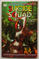 Suicide Squad Vol. 1 Kicked In The Teeth The New 52 DC Comics Graphic Novel Comic Book