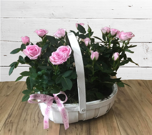 Mother's Day Rose Planter with bow