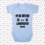 My Big Brother (or Sister) Is A Labrador Bodysuit - Click My Clobber