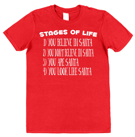 Santa Stages Of Life Christmas T-Shirt - Click My Clobber