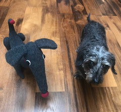 Charcoal dachshund soft toy by cdbdi