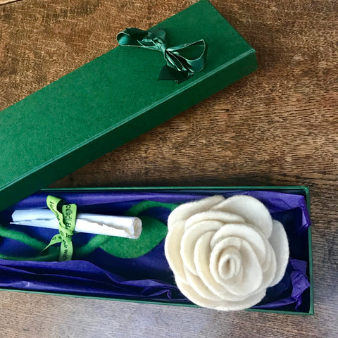 Single white everlasting rose in a gift box by cdbdi