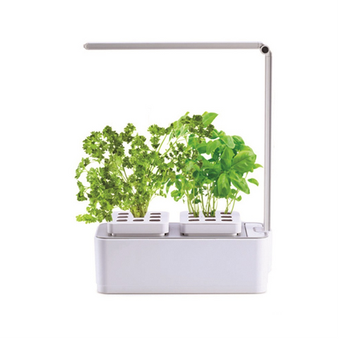 HydroGarden Hydroponic Grow Kit