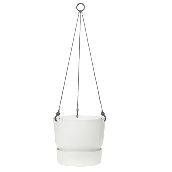Greenville Hanging Basket - 24cm