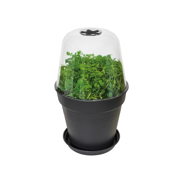Propagation Grow Pot Lid - 17cm