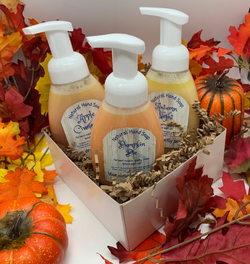 Fall Foaming Hand Soap Trio - Blue Dragonfly Acres LLC
