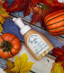 Pumpkin Pie Foaming Hand Soap  | Natural Hand Wash - Blue Dragonfly Acres LLC