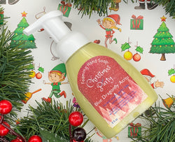 Christmas Party Foaming Hand Soap - Natural Hand Wash - Blue Dragonfly Acres LLC