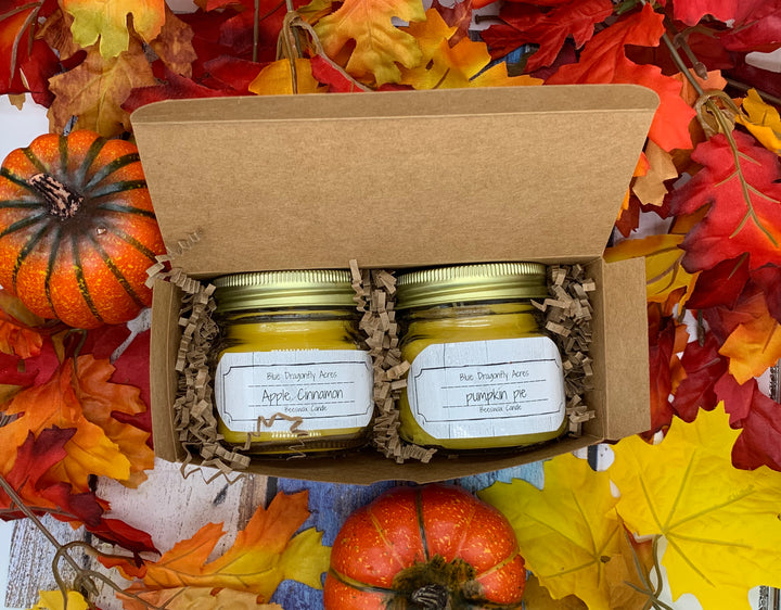 Fall Candle Duo - Blue Dragonfly Acres LLC
