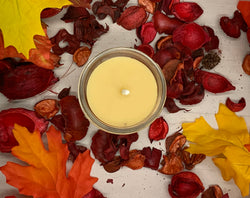 Apple Cinnamon Beeswax Candle - Blue Dragonfly Acres LLC