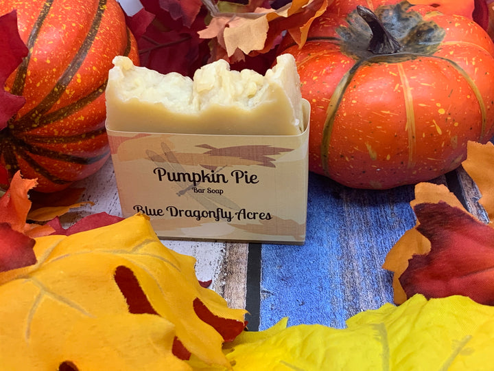 Pumpkin Pie Bar Soap - Blue Dragonfly Acres LLC