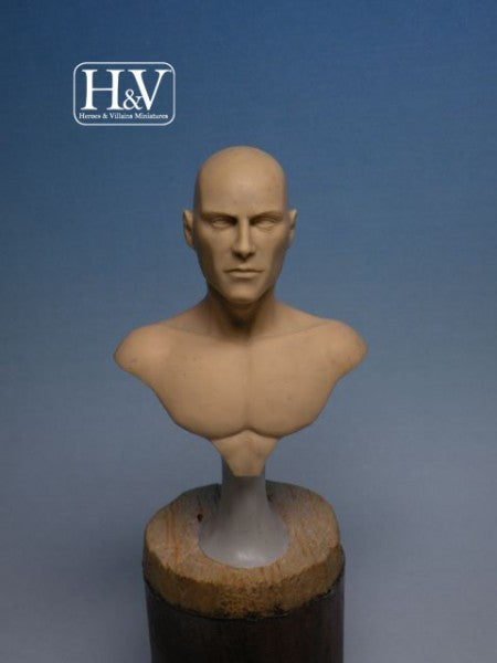 Anatomical Bust, Male