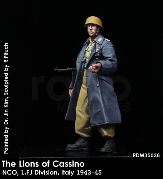 The Lions of Cassino, NCO, 1/FJ Division, Italy 1943-45