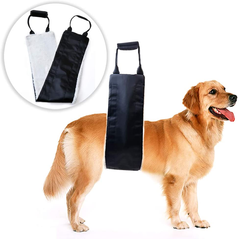 Portable Dog Hip Support Harness