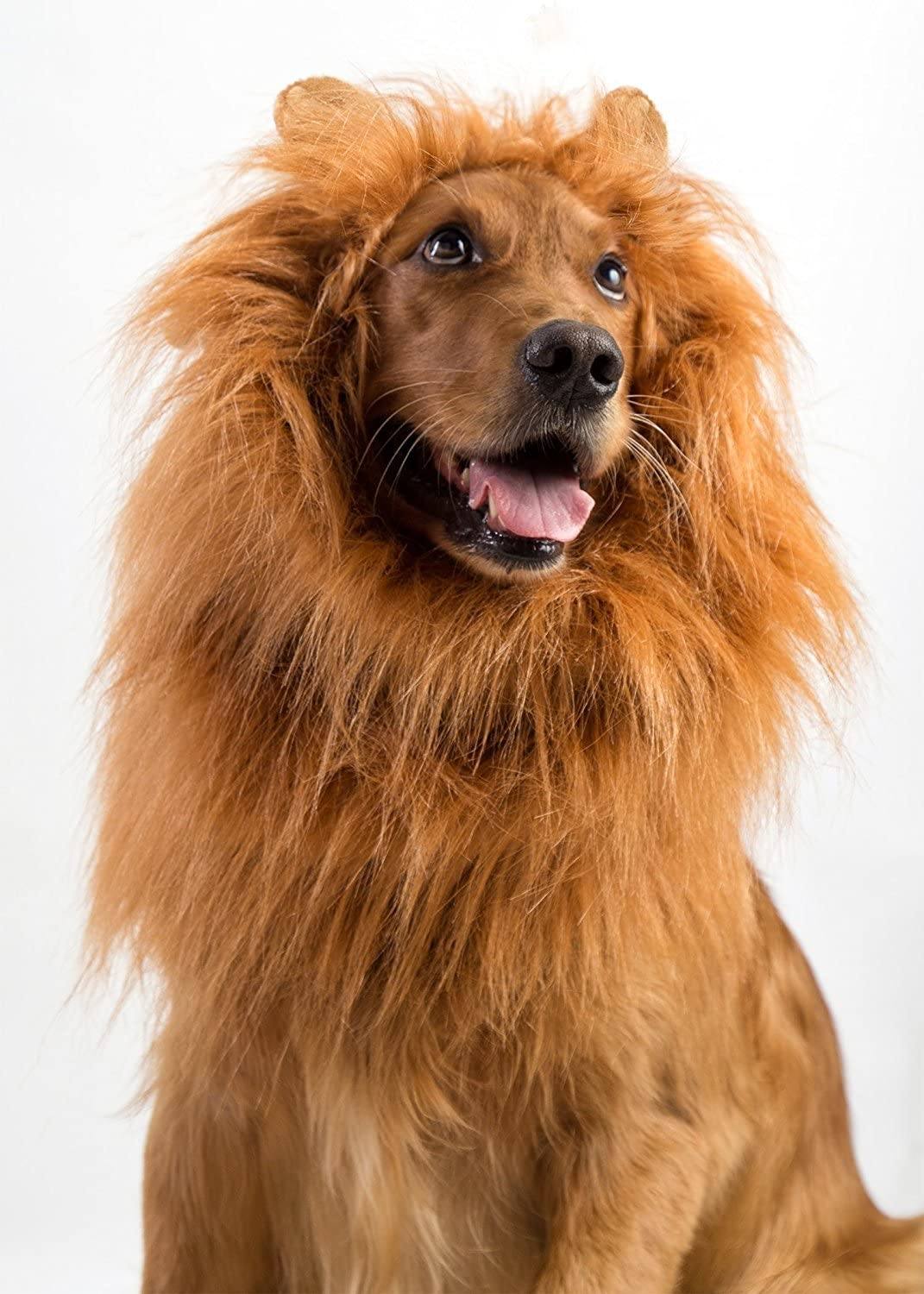RoyalFur™ Dog Lion Mane