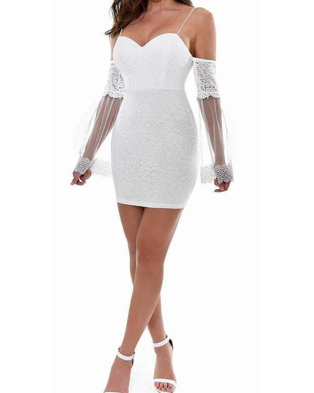 Sheer Mesh Flare Sleeve Bodycon Lace Dress