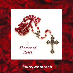 A Shower of Roses to Support the March for Life