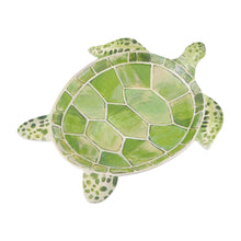 "Load image into Gallery viewer, Gourmet Art 4-Piece Turtle Melamine 9 3/4"" Plate"