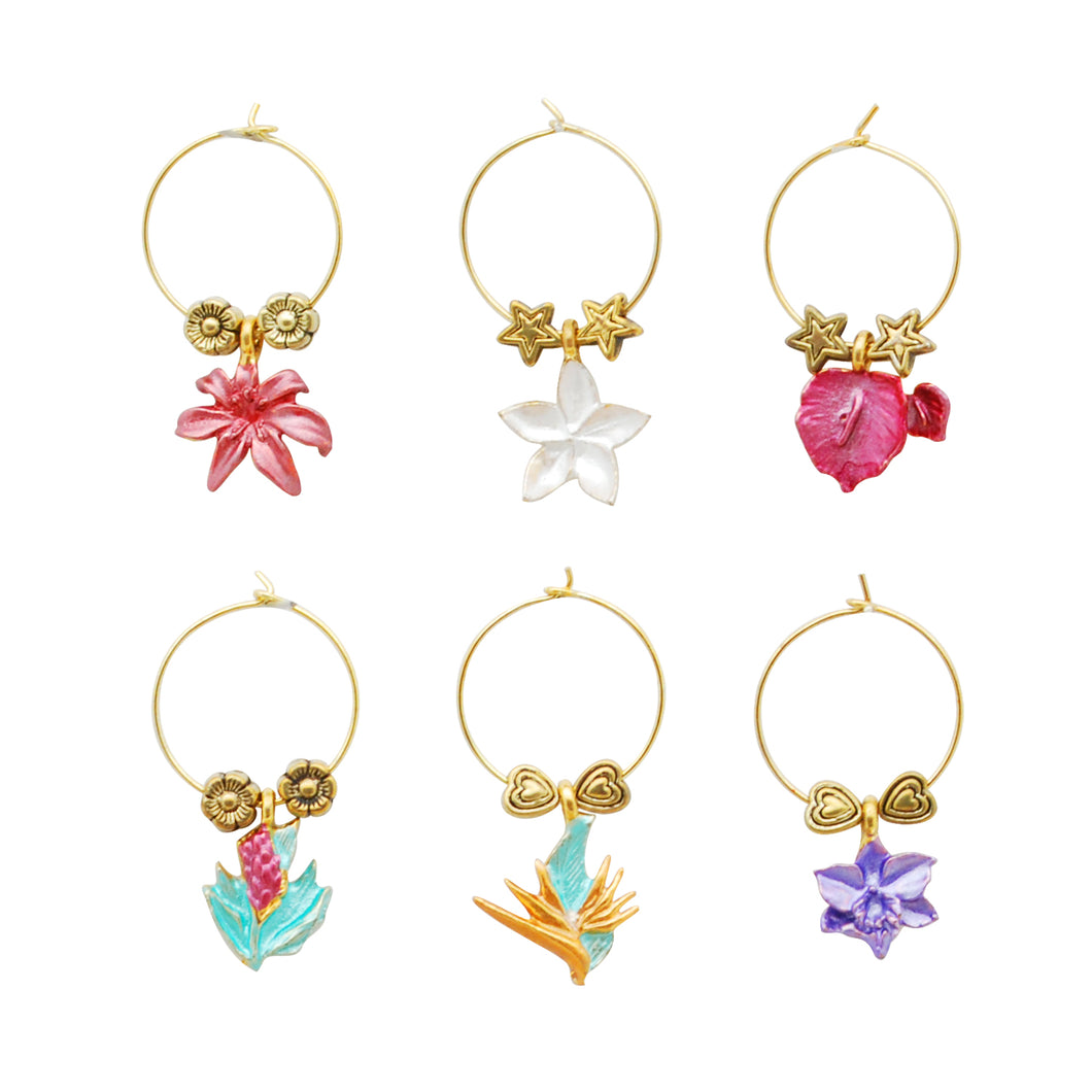 Wine Things 6-Piece Tropical Paradise Wine Charms, Painted
