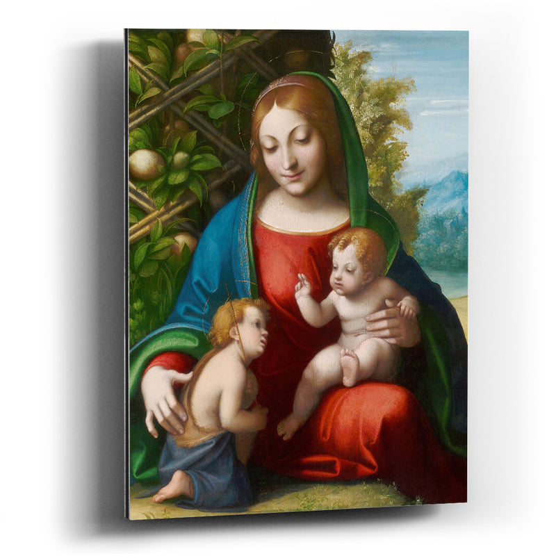 Cuadro aluminio Virgin and Child with the Young Saint John the Baptist - balcru