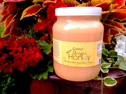 A 6 lb. Pail of New Cassel Raw Honey