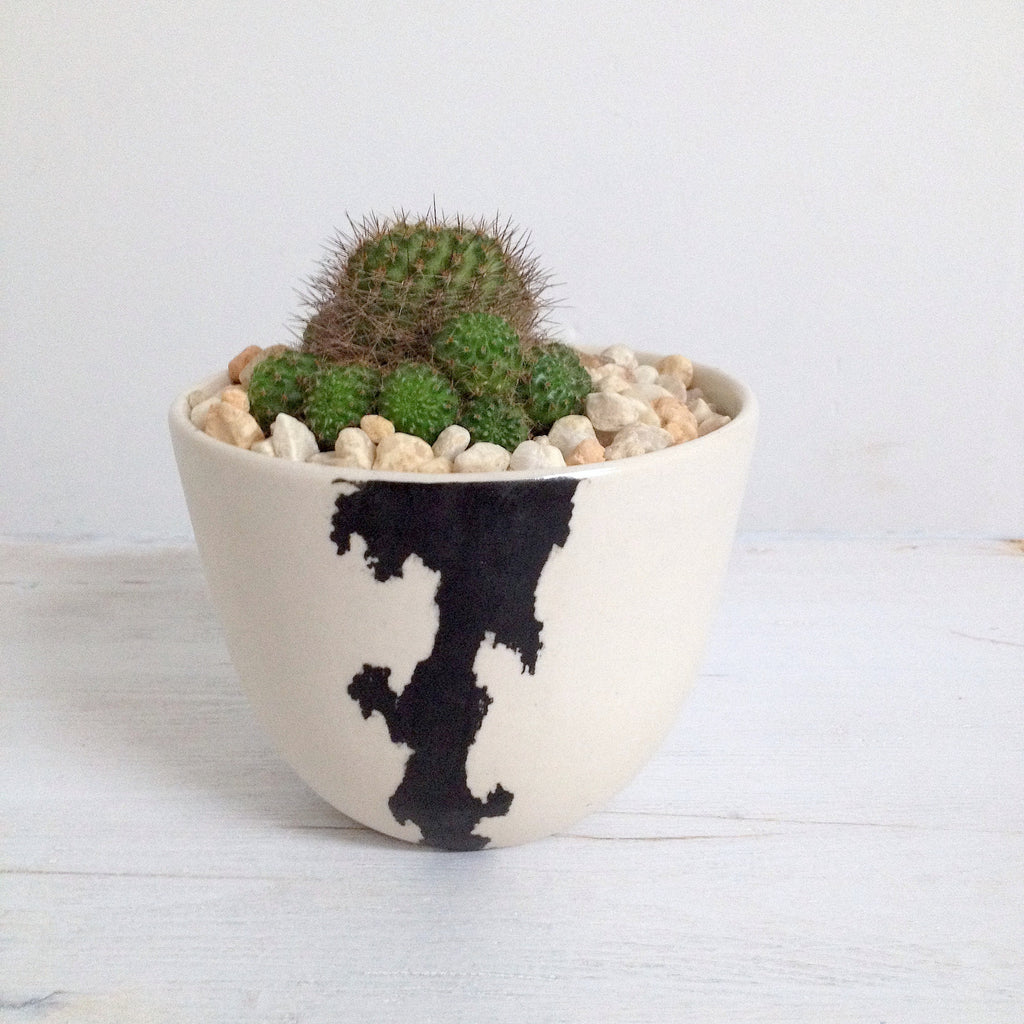 Crater Planter
