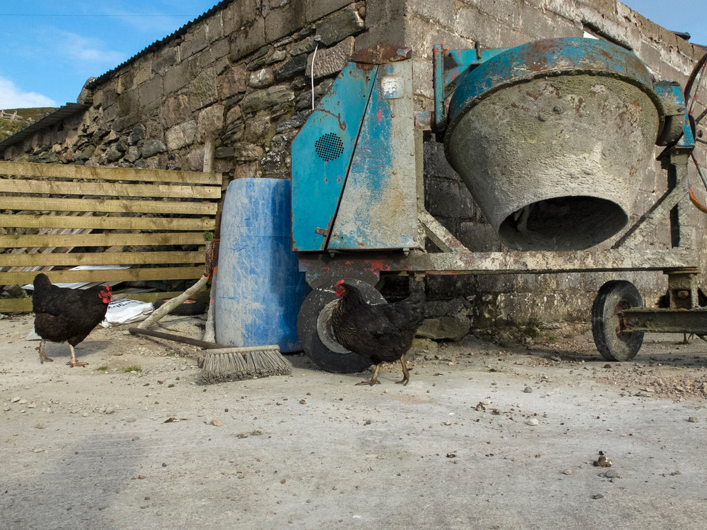 Cement Mixer and Chickens, Strathanbeg, Sutherland, Scotland 2014