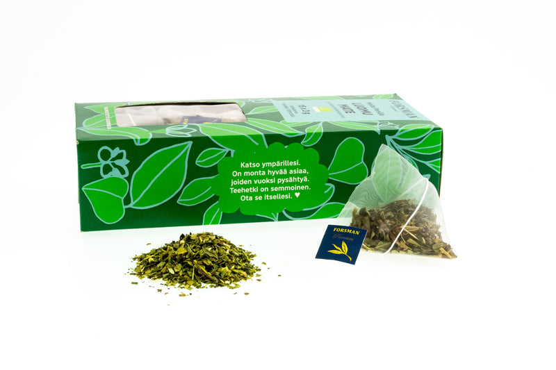 Organic Yerba Mate Mint-Parsley Pyramid Tea