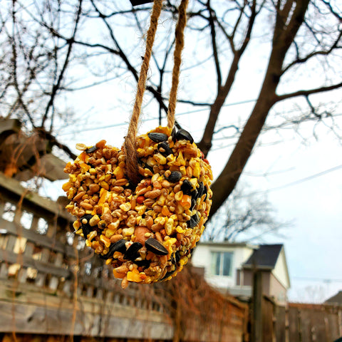 Heart Wild Bird Feeder
