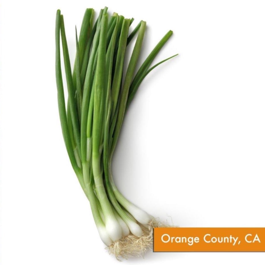 Organic Green Onion (Each, ~2 oz)