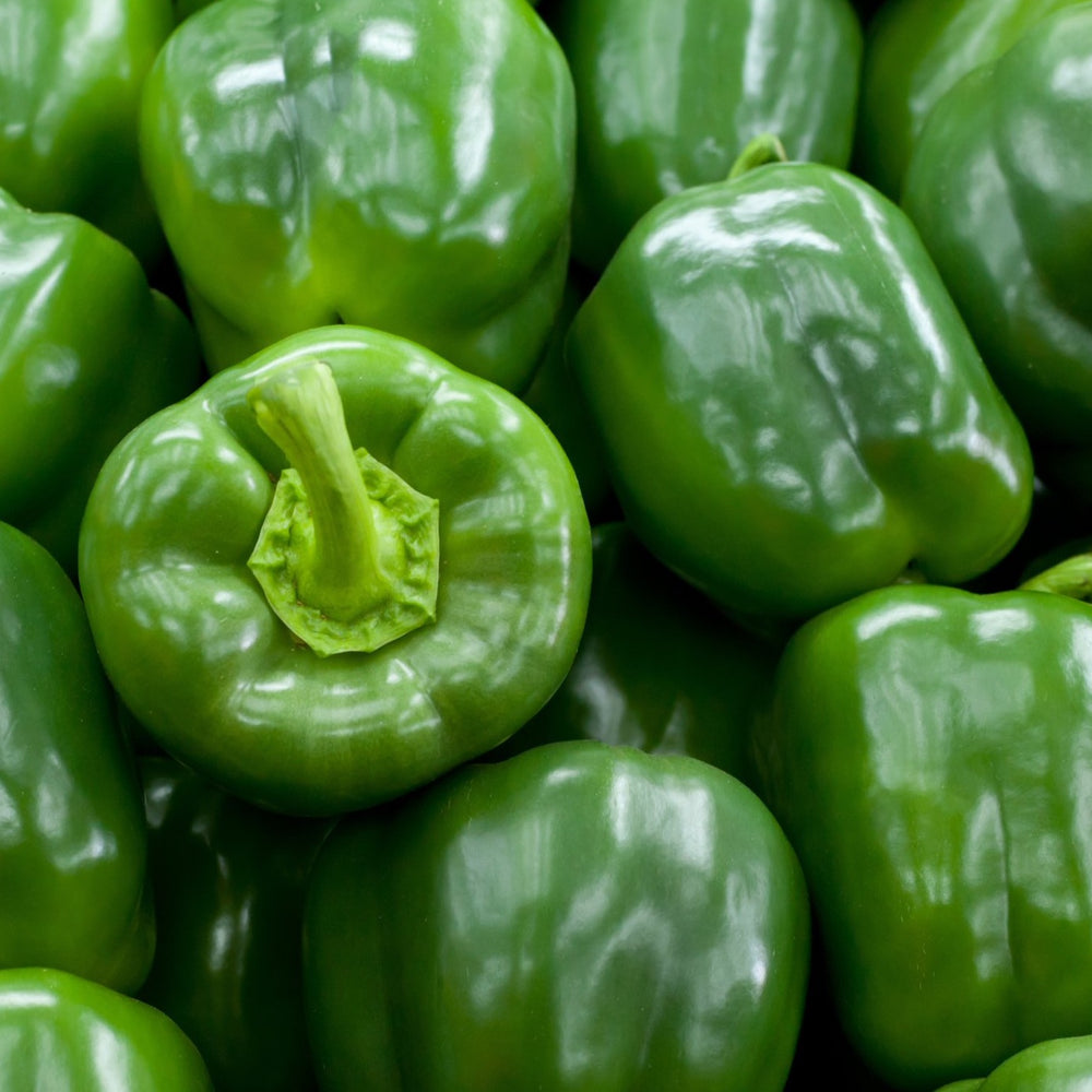 Green Bell Peppers (2-Pack)