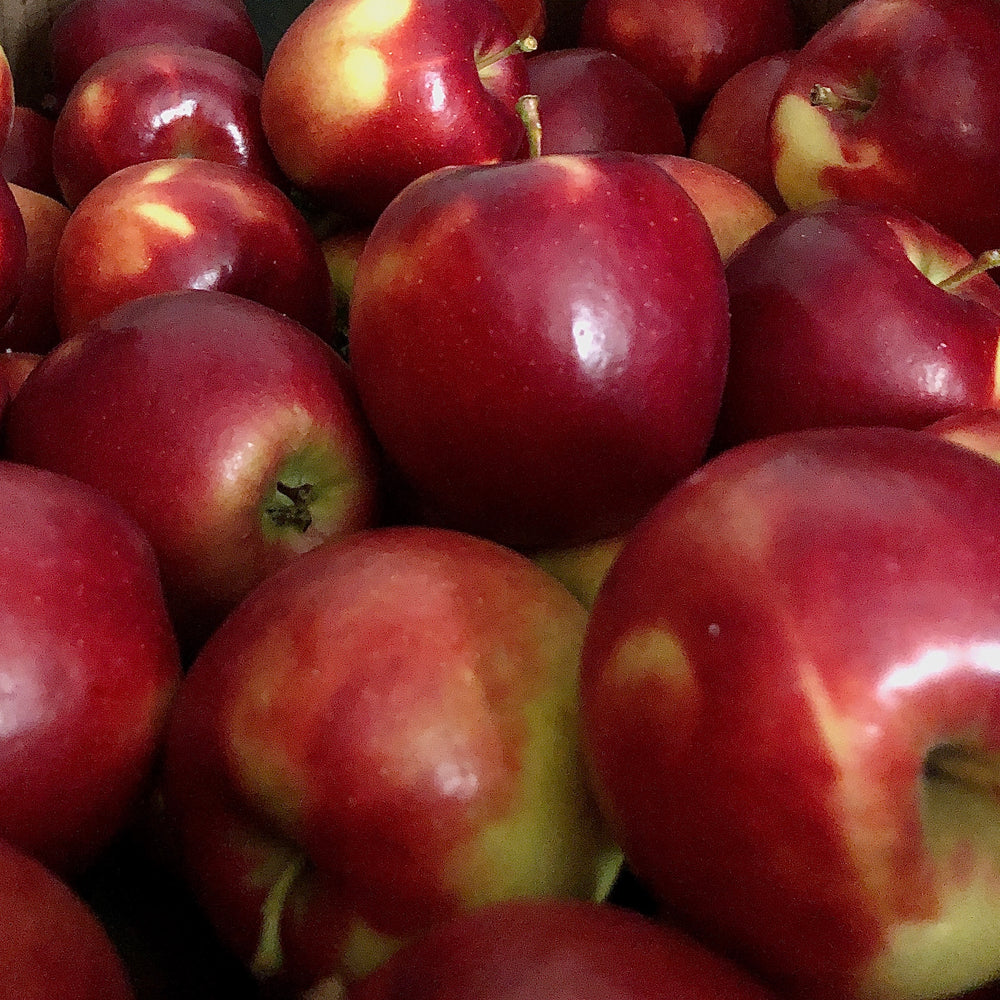 Crimson Crisp Apples, Medium