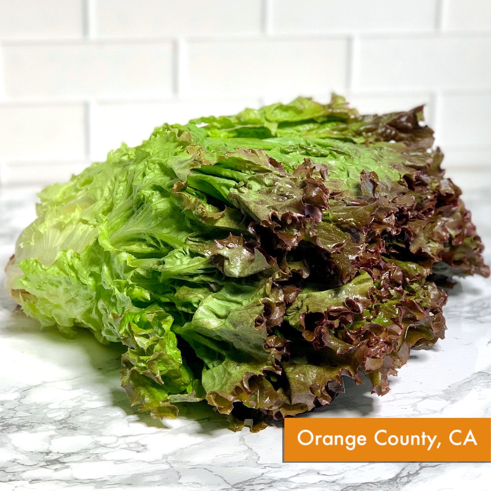 Organic Red Leaf Lettuce (Each)