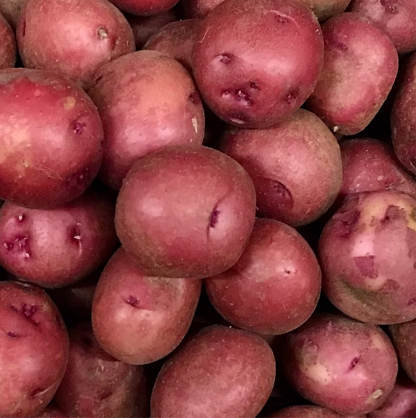 Red Skin Potatoes, New Small (~1 Pound)