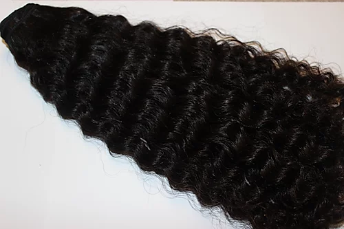 BURMESE EXOTIC CURLY HAIR