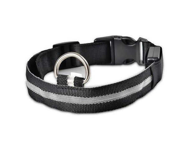 LED Pet Dog Collar wowstore Collar-Black L
