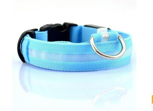 LED Pet Dog Collar wowstore Collar-Blue L