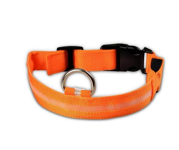 LED Pet Dog Collar wowstore Collar-Orange L